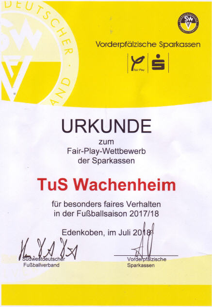 Urkunde Fair Play